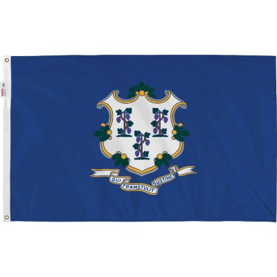Valley Forge 3 Ft. x 5 Ft. Nylon Connecticut State Flag
